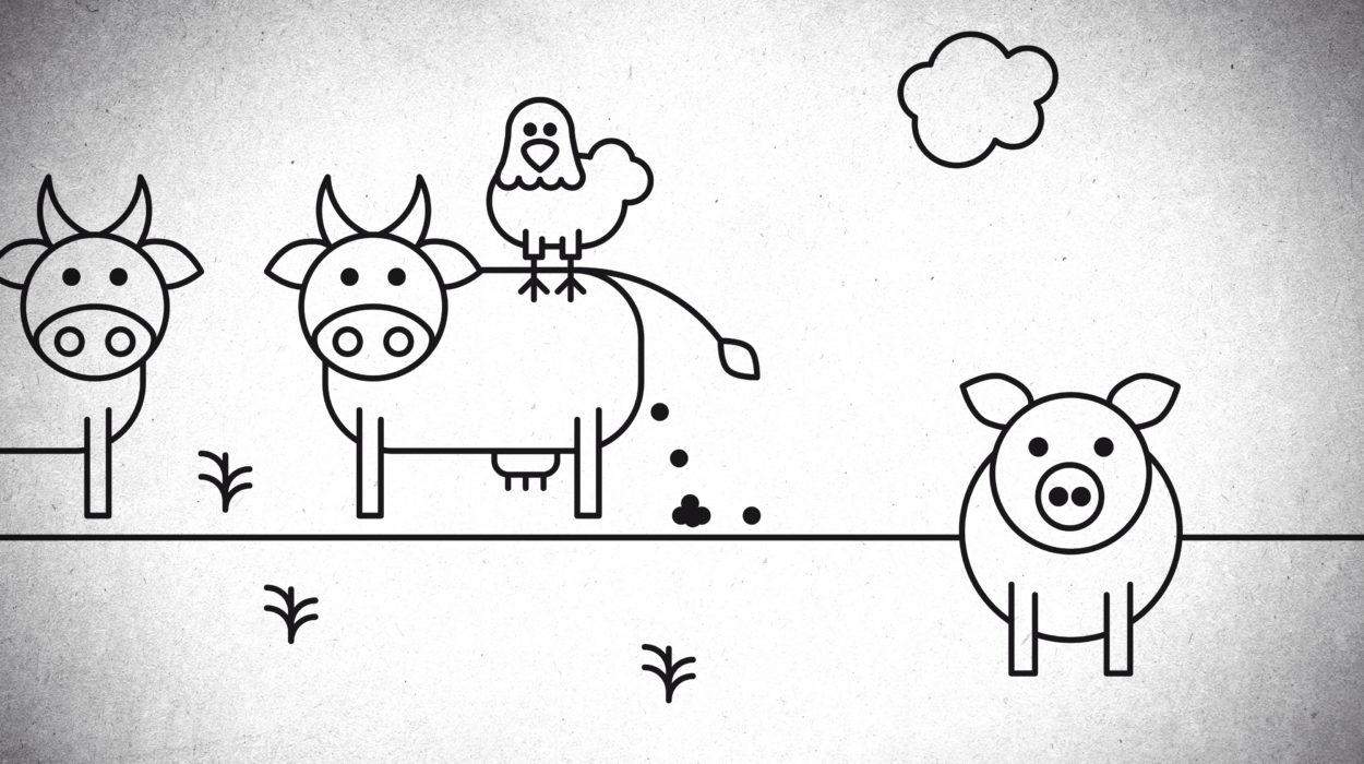 Grafik från Skydda antibiotika-filmen: En bajsande ko.