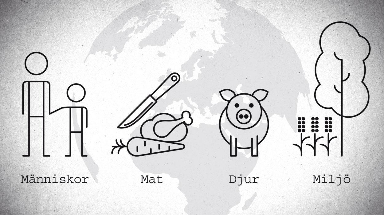 Grafik från Skydda antibiotika-filmen: Människor, mat, djur och miljö.