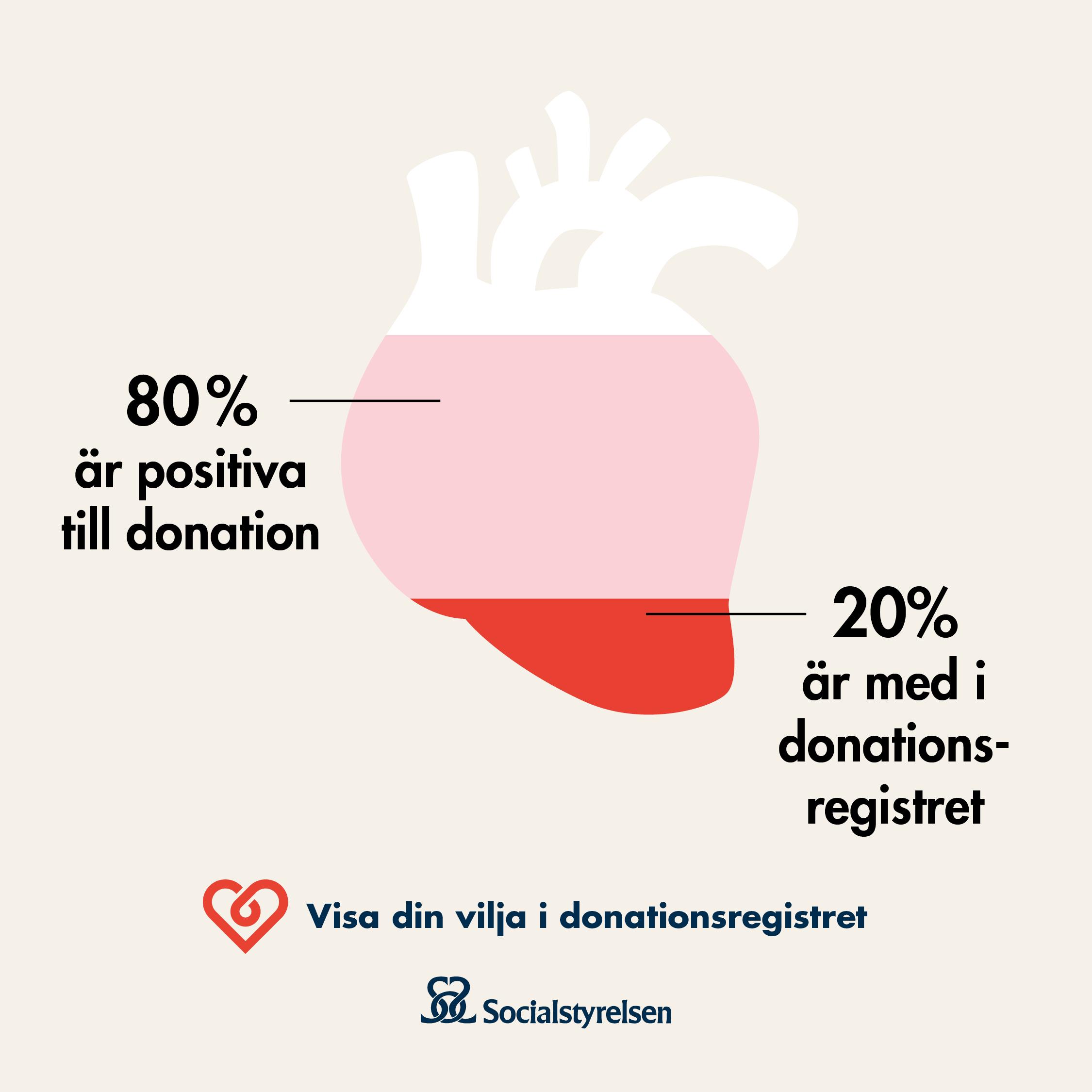 Infografik organdonation, 80 % är positiva till donation